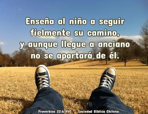 proverbios 22_6
