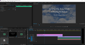 Premiere video editing