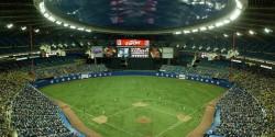 baseball AstroTurf scattering ashes