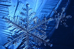 Water : Five Frozen Facts about Snow