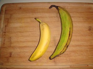 A banana and a plantain (Image: jerseyveganchick WordPress)