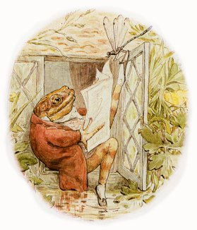 Image result for beatrix potter drawings