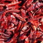 Ultimate Guide to Drying Hot Chile Peppers