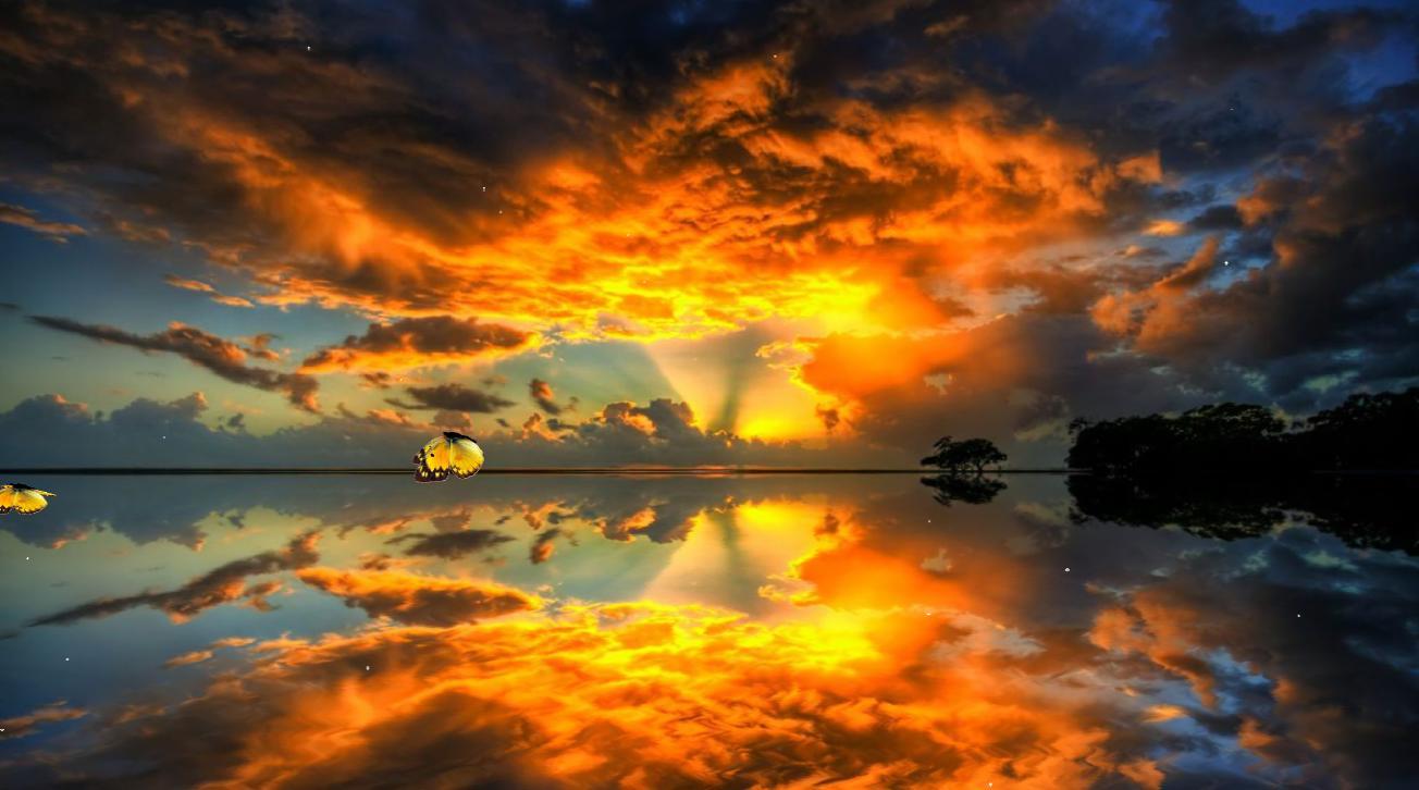 Beautiful Dawn Screensaver