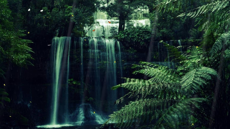 Mystic Forest Screensaver