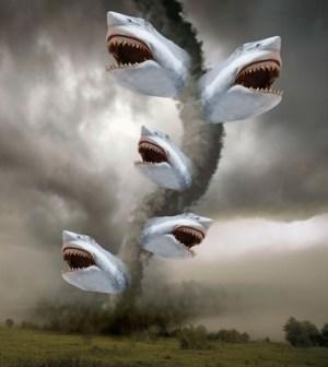 Sharknado. Image © Syfy