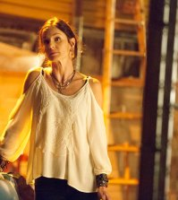 """COLONY -- """"In From the Cold"""" Episode 108 -- Pictured: Sarah Wayne Callies as Katie Bowman -- (Photo by: Isabella Vosmikova/USA Network)"""