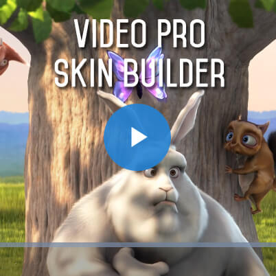 Video Pro Skin Builder