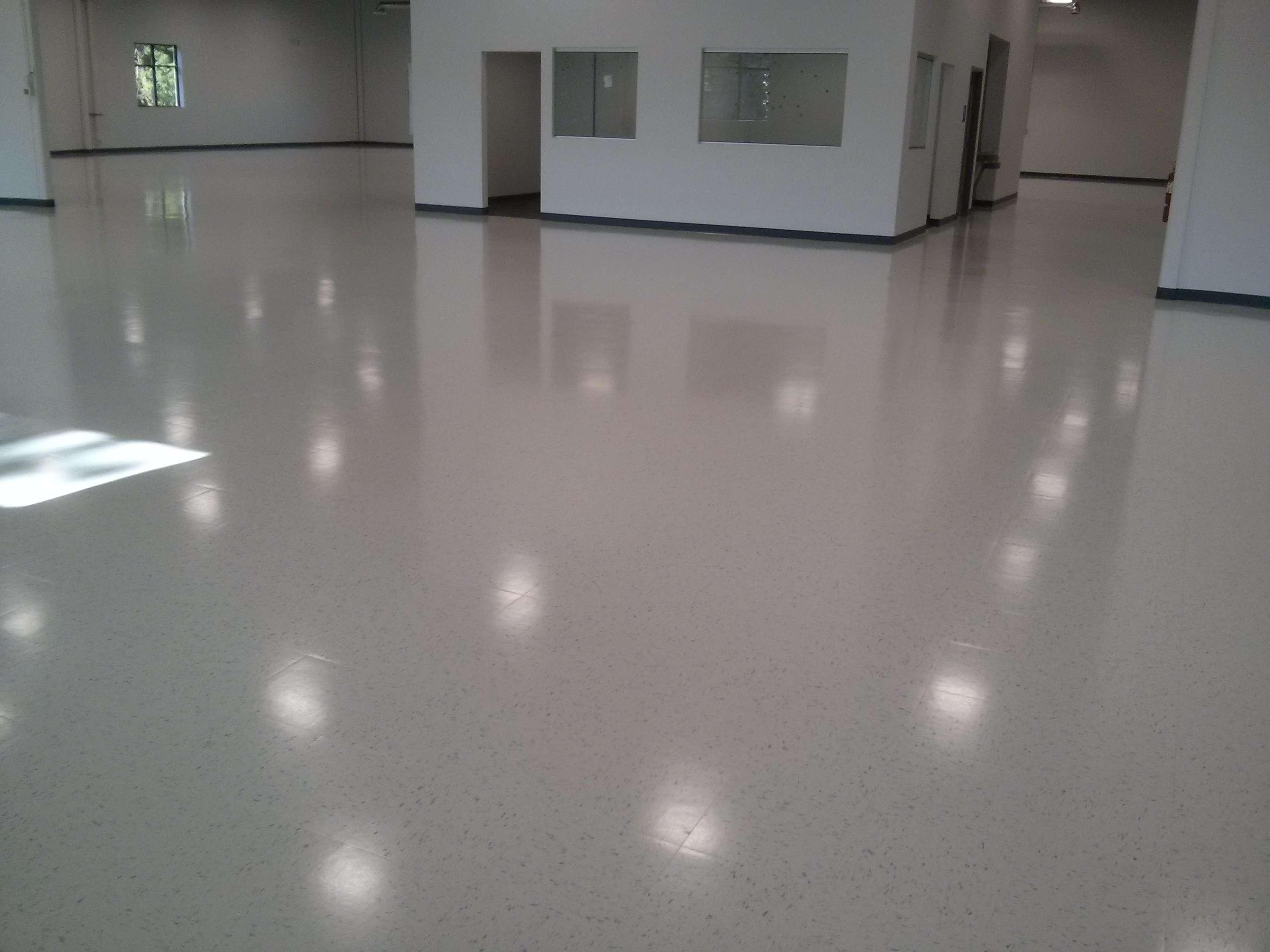 Floor sealer for vinyl tiles