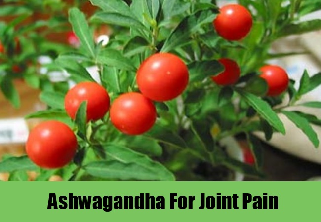Ashwagandha For Joint Pain