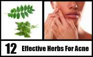 12 Effective Herbs For Acne