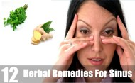 12 Most Effective Herbal Remedies For Sinus