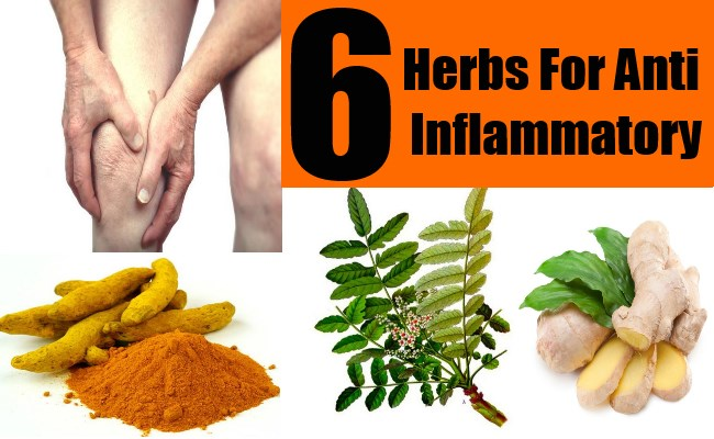 Top 6 Herbs For Anti Inflammatory