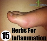 15 Herbs For Inflammation