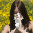 Effective Herbal Remedies for Allergies