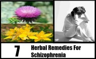 7 Herbal Remedies For Schizophrenia
