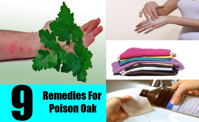 9 Remedies For Poison Oak