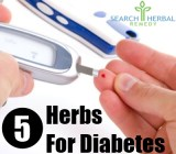 5 Herbs For Diabetes