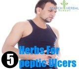 5 Herbs For Peptic Ulcers