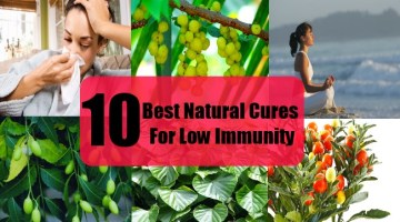 10 Best Natural Cures For Low Immunity