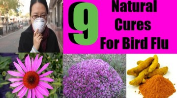 9 Effective Natural Cures For Bird Flu