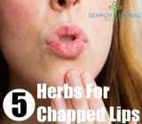 5 Herbs For Chapped Lips
