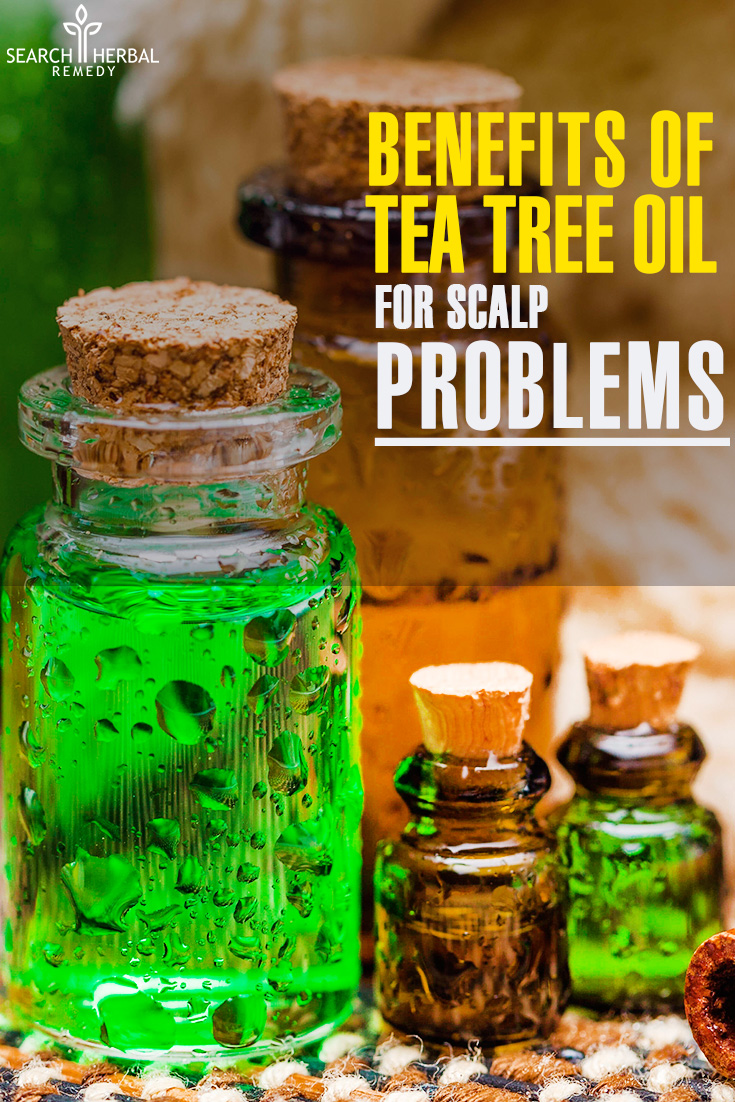 5 Benefits Of Tea Tree Oil For Scalp Problems