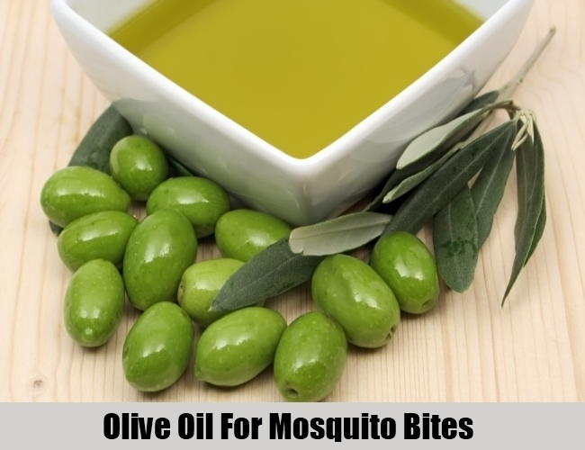 Olive Oil For Mosquito Bites