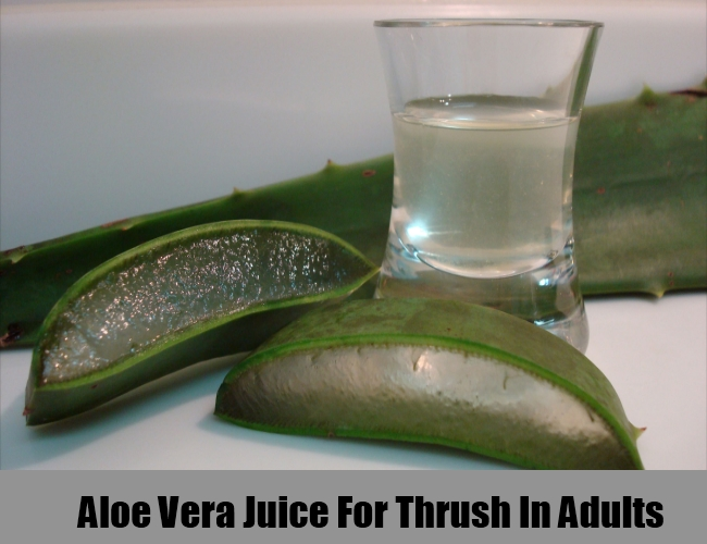 Aloe Vera Juice For Thrush In Adults
