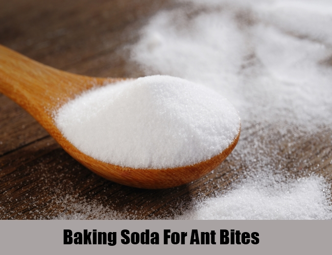 Baking Soda For Ant Bites