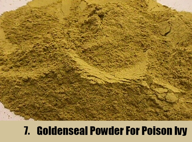 Goldenseal Powder For Poison Ivy