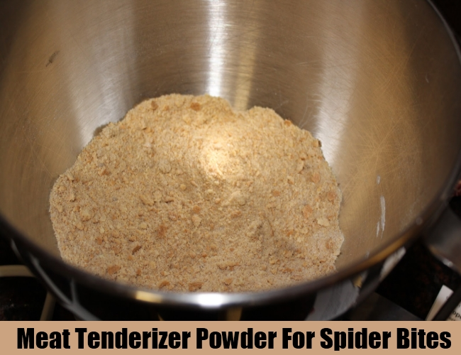 Meat Tenderizer Powder For Spider Bites