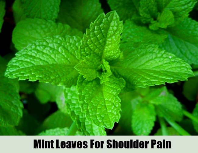 Mint Leaves For Shoulder Pain