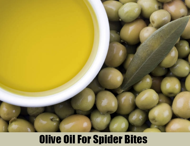 Olive Oil For Spider Bites