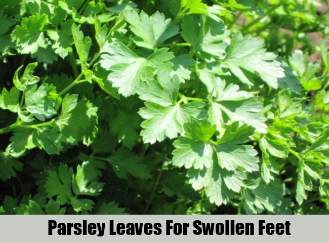 Parsley Leaves For Swollen Feet