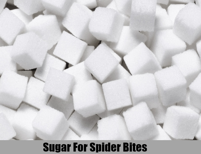 Sugar For Spider Bites
