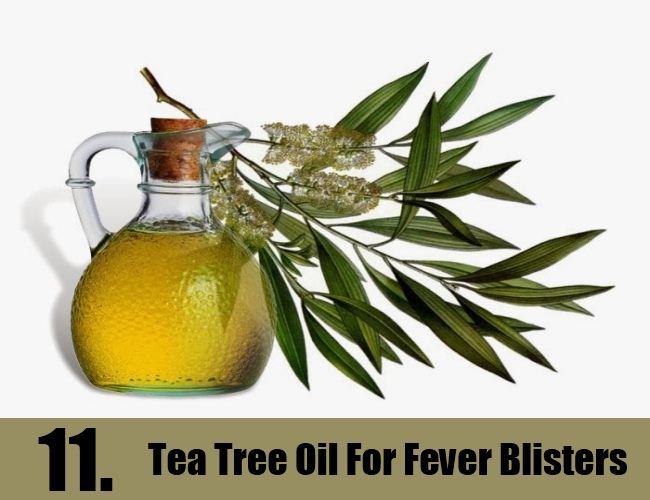 Tea Tree Oil For Fever Blisters