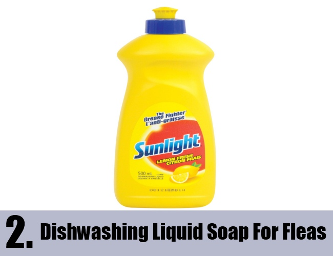 Dawn Dishwashing Liquid Soap