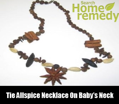 Allspice Necklace
