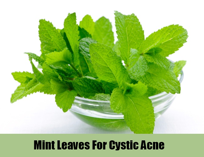 Mint Leaves For Cystic Acne