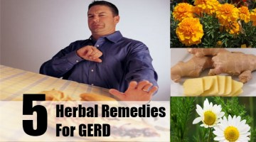 Herbal Remedies For GERD