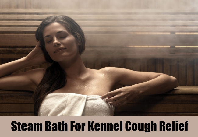 Steam Bath For Kennel Cough Relief