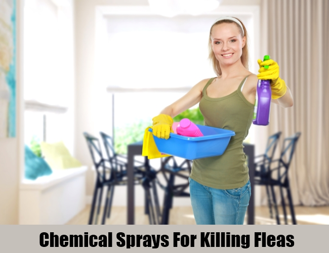 Chemical Sprays For Killing Fleas
