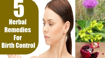 Herbal Remedies For Birth Control