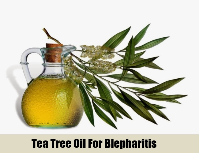 Tea Tree Oil For Blepharitis