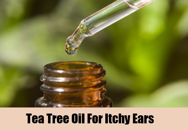 Tea Tree Oil For Itchy Ears
