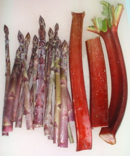 asparagus and rhubarb