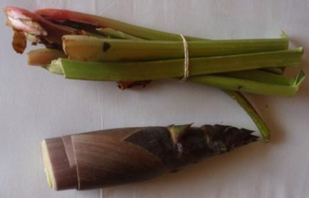 rhubarb and bamboo shoot