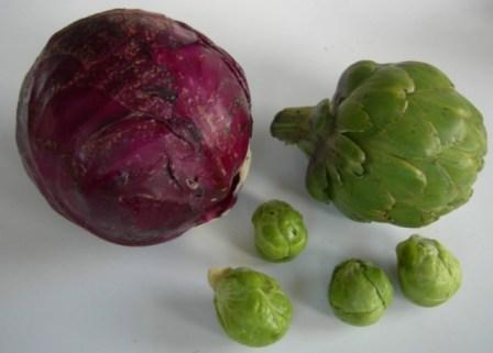 purple cabbage and artichoke