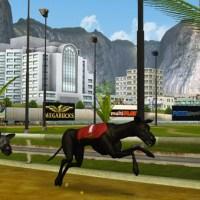 Betradar lanza su sistema virtual de carreras de galgos